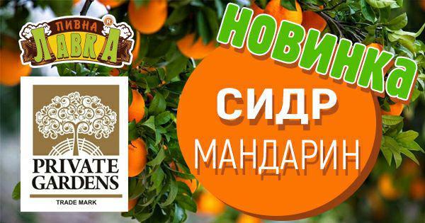 В сети Пивная  Лавка новогодняя НОВИНКА cидр Мандарин!